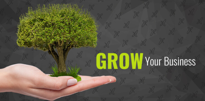 Human Hand was carrying a small stem to be planted into the soil - Representing Grow Your Business Concept.